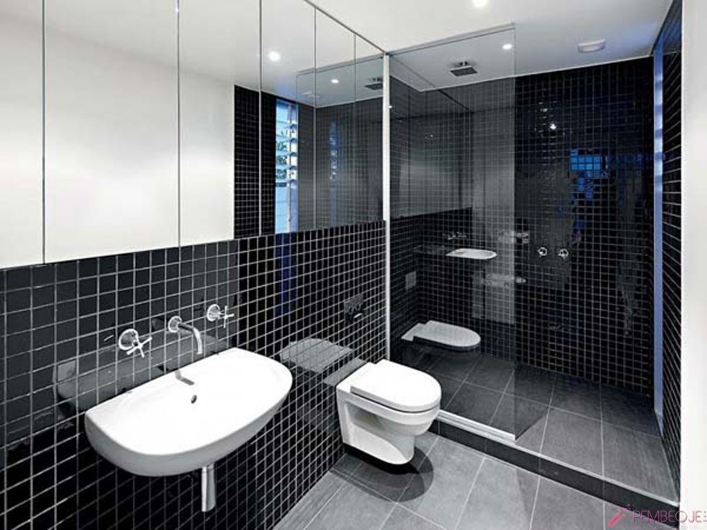 Tuvalet ve banyo dekorasyon rnekleri for Monochrome bathroom designs